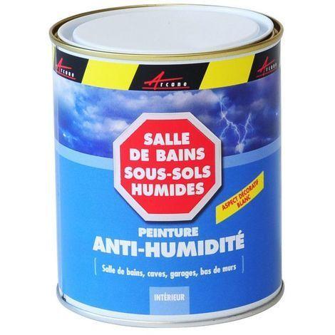 PEINTURE ANTI-HUMIDITE ANTI MOISISSURE MURS HUMIDES BETON PLATRE PLACO- ARCASCREEN - ARCANE INDUSTRIES - Blanc - 0.75 L (jusqu a 3m²)