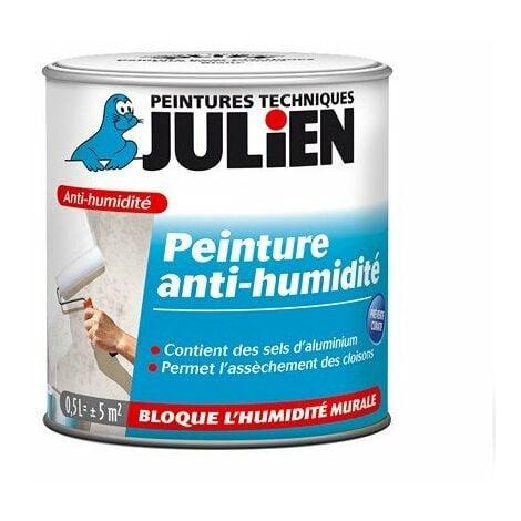 Peinture Anti Humidité Blanche Julien