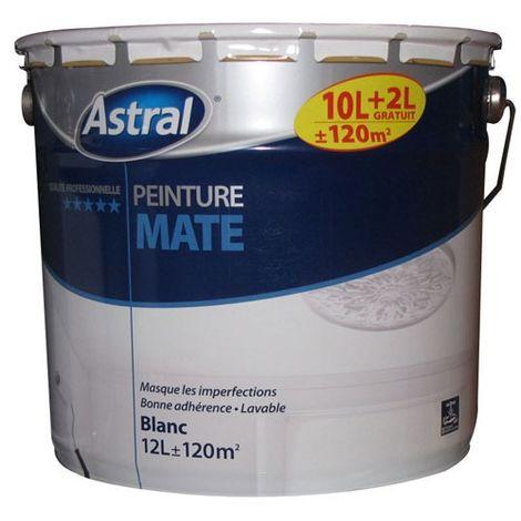 Peinture Bicouche Acrylique Mat Blanc 5 L