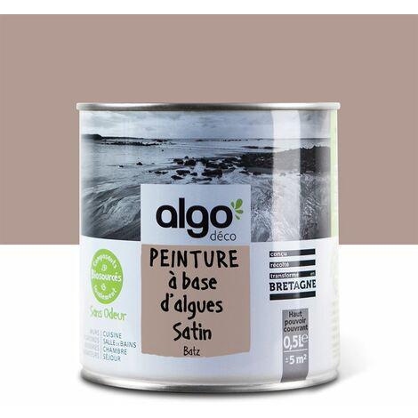 Peinture Biosourcée Décorative Algo Brune Finition Satin 0,5L (Batz)