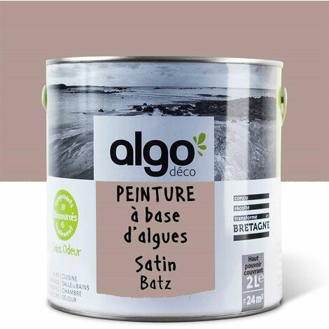 Peinture Biosourcée Décorative Algo Brune Finition Satin 2L (Batz)