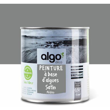 Peinture Biosourcée Décorative Algo Grise Finition Satin 0,5L (Méaban)