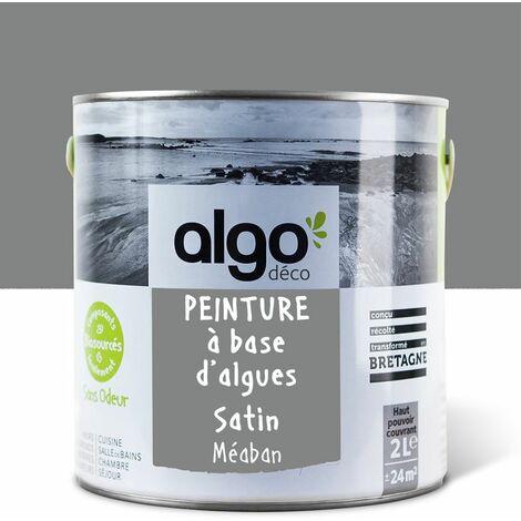 Peinture Biosourcée Décorative Algo Grise Finition Satin 2L (Méaban)