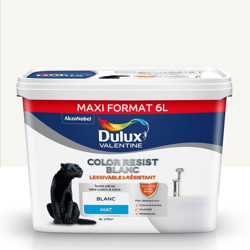 Peinture Color Resist Blanc Mat Blanc 6 L Maxi Format Dulux