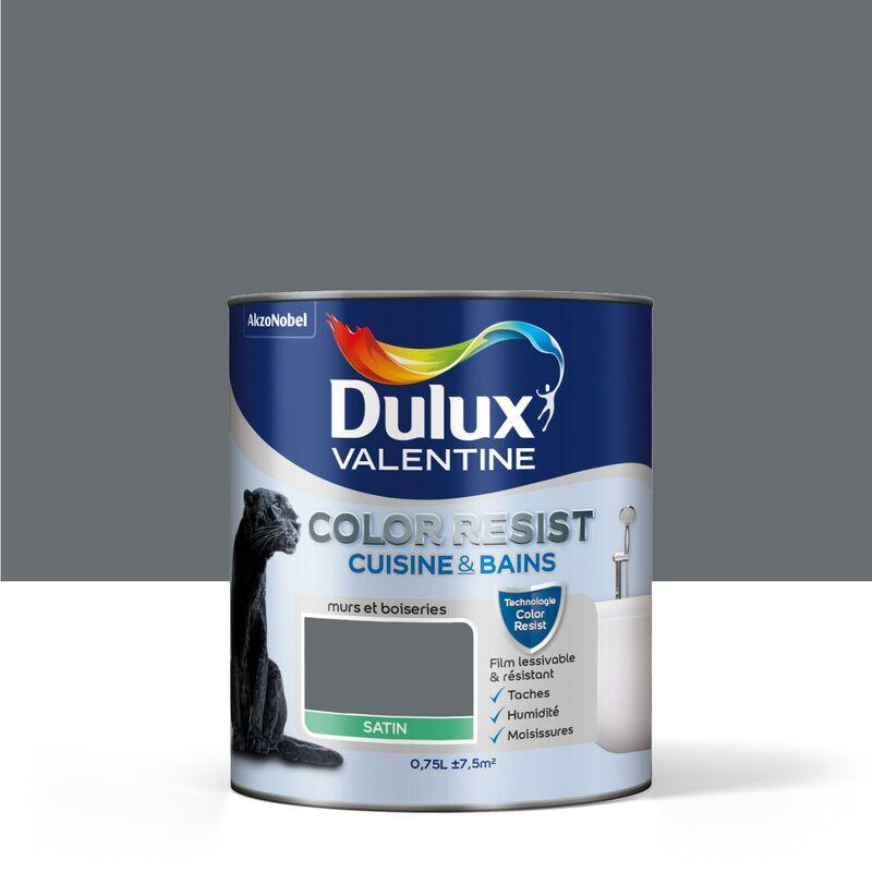 Peinture Color Resist Cuisine Bains Satin Anthracite 0 75 L