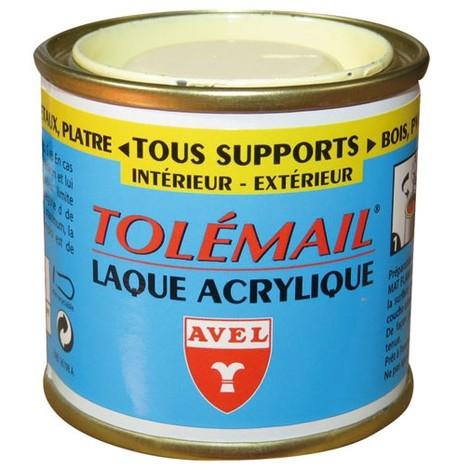 Peinture Laque Acrylique TOLEMAIL