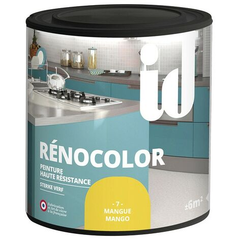 Peinture multisurface RENOCOLOR MANGUE 450ML - ID Paris