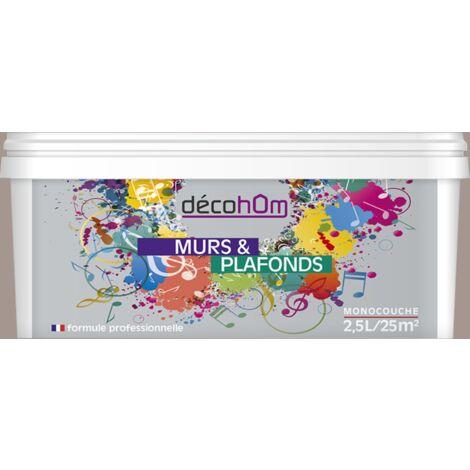 Peinture murale Brun taupe DECOHOM S 3005-Y80R