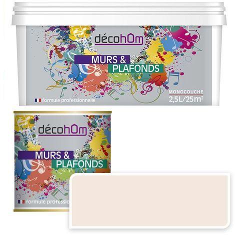 Peinture Murale monocouche couleur Beige 0,5Litre MAT