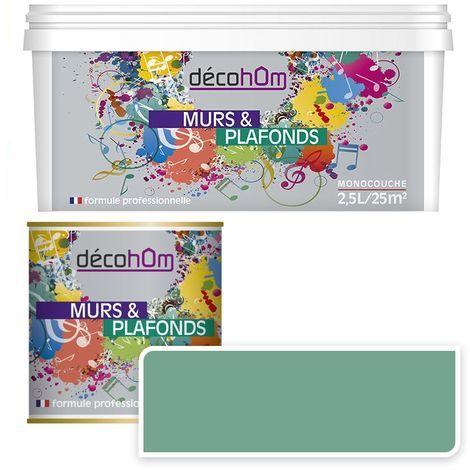 Peinture Murale monocouche couleur Lin 0,5Litre SATIN