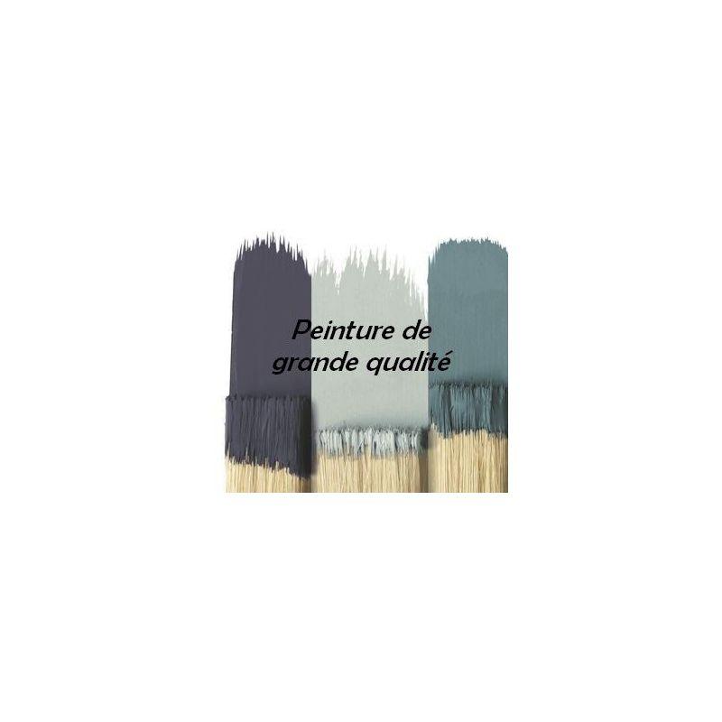 Peinture Murale Sans Odeur Couleur Bleu Nuit Qualité