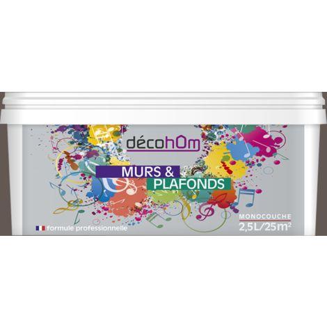 Peinture murale Taupe foncé DECOHOM S6005-Y80R