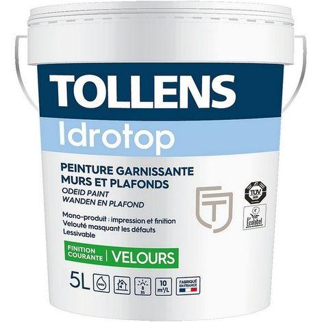 "main image of ""Peinture TOLLENS professionnelle Idrotop Velours"""