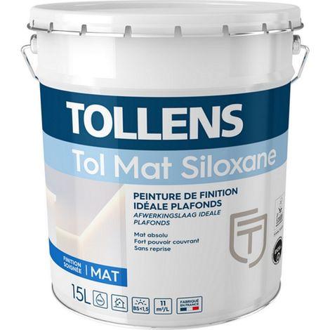 "main image of ""Peinture TOLLENS professionnelle Tol Mat Siloxane Mat Absolu"""
