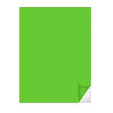 película adhesiva 3M de largo 100x61cm Serie 50 SC50 luz verde SC50-72