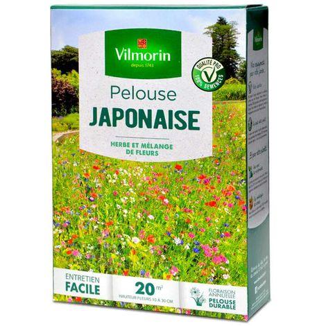 Pelouse fleurie japonaise, gazon et mélange de fleurs. 20 m²