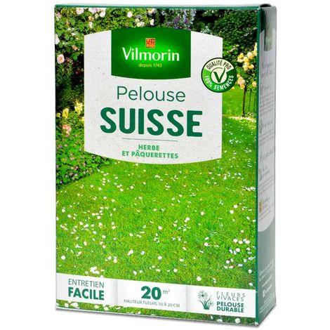 Pelouse fleurie suisse, gazon et pâquerettes. 20 m²