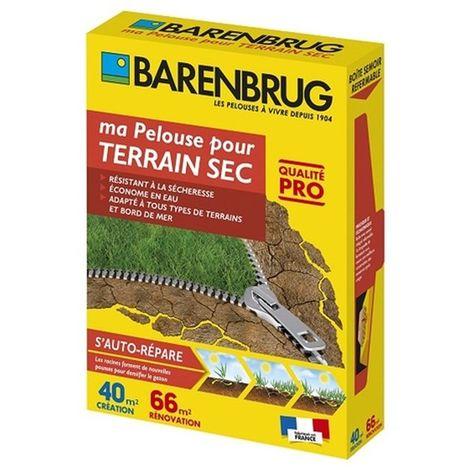 """main image of """"Pelouse pour terrain sec 1Kg Barenbrug Qualité Pro"""""""