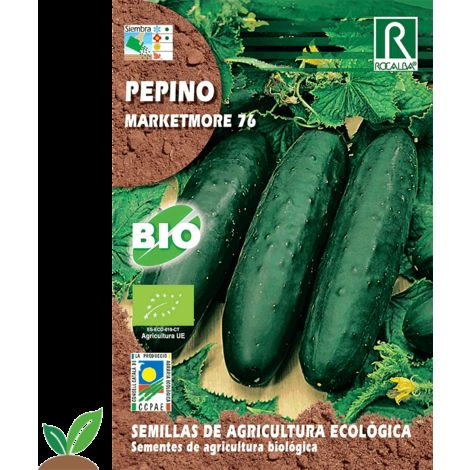 PEPINO MARKETMORE 76 ECO - SEMILLAS