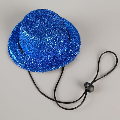 Perle rare Chapeau pour chien Accessoires pour chat et chien réglables Chapeau d'anniversaire pour chien