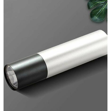 395NM Torche UV en Forme de Stylo Durcissement de Colle Vérification de Argent