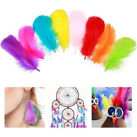 Perle rare Plumes Colorées, 500 Pcs Plume Multicolore Décoration Pour Chapeaux Attrape-rêves Costume Artisanat