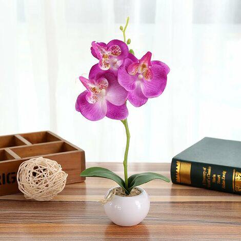 Perle rare Simulation plante petit pot rond Phalaenopsis bonsaï simulation fleur soie fleur décoration A-