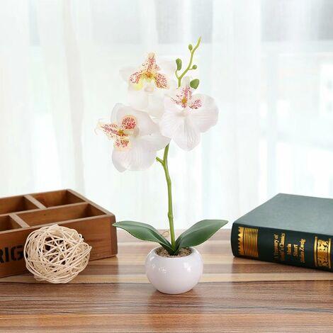 Perle rare Simulation plante petit pot rond Phalaenopsis bonsaï simulation fleur soie fleur décoration B-