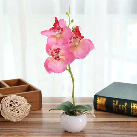 Perle rare Simulation plante petit pot rond Phalaenopsis bonsaï simulation fleur soie fleur décoration C-