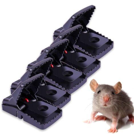 Perle rare Souricières domestiques, pièges à rats et cages à rats, attraper et remplir les souris, 5 pièges à souris réutilisables
