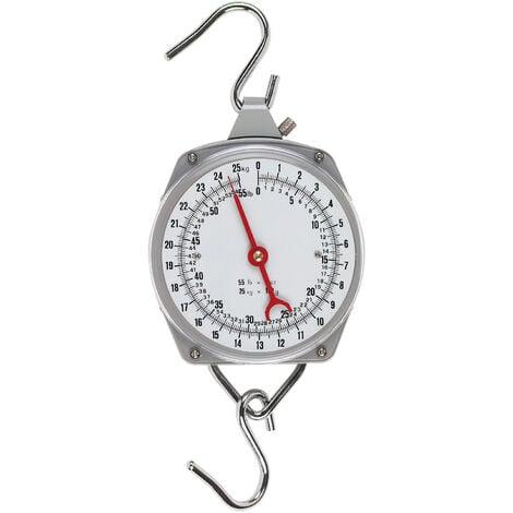 """main image of """"Peson dynamométrique - 250 kg"""""""