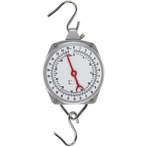 Peson dynamométrique - 250 kg