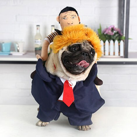 """main image of """"Pet Halloween Funny Cosplay Costume Dogs Small Puppy Standing Person on Back with Yellow Hair Dog Custome"""""""