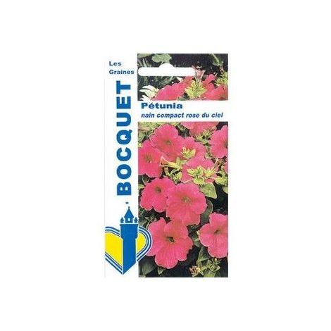 Pétunia nain compact rose du ciel - 0,5g