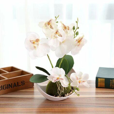 Phalaenopsis fleur artificielle bonsaï ornements plante artificielle pot de fleur artificielle D