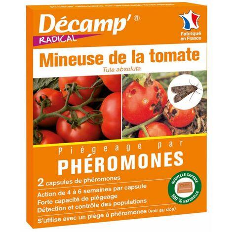 Phéromones mineuse de la tomate
