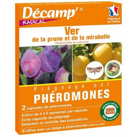 Phéromones ver de la prune x2