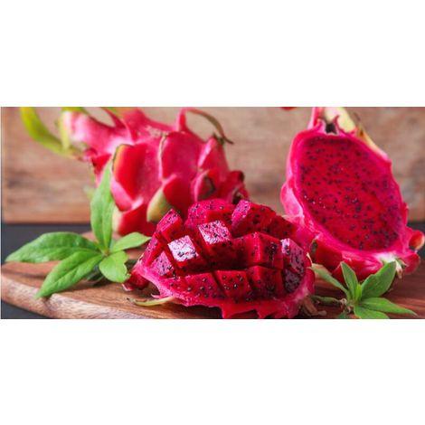Pianta di Pitaya Frutto del Drago polpa rossa