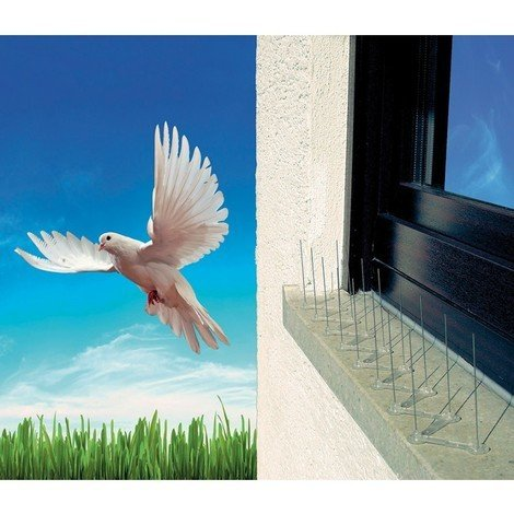 Pic anti pigeon Transparent 13,5 x 11,7 x 32 cm - Prima Flora 610261