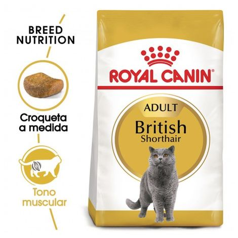 Pienso ROYAL CANIN BRITISH SHORTHAIR para gatos adultos