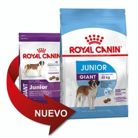 Pienso ROYAL CANIN GIANT JUNIOR perros de tamaño gigante (De 8 a 24 meses)