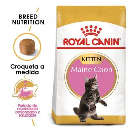 Pienso ROYAL CANIN KITTEN MAINE COON para gatitos