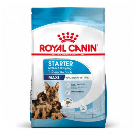 Pienso ROYAL CANIN MAXI STARTER cachorros tamaño grande (Hasta 2 meses) y madres gestantes