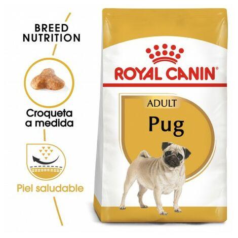 Pienso ROYAL CANIN PUG ADULT perros de raza Carlino adulto y maduro (A partir de 10 meses)