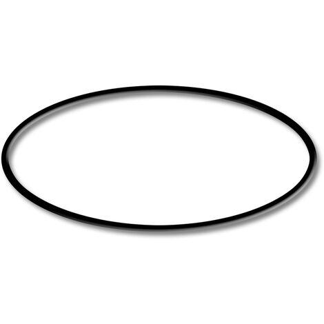 Pieza de repuesto: SunSun CPF-280/CPF-380/CPF-500 Junta tórica del filtro de estanque a presión 1