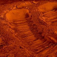 Pigment naturel pour béton et chaux : Terre de Sienne Calcinée