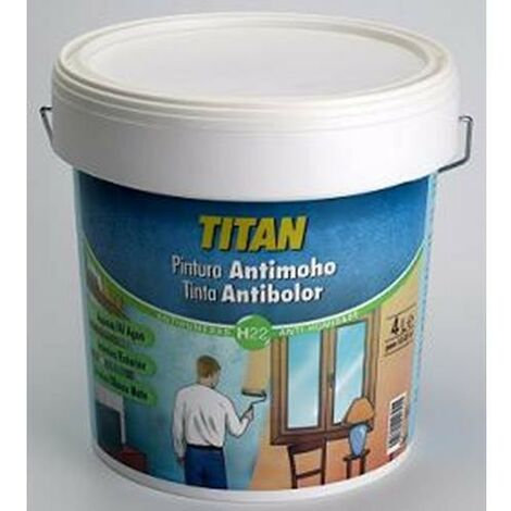 PINTURA ANTIMOHO INT/EXT BLANCO BOTE 750ML