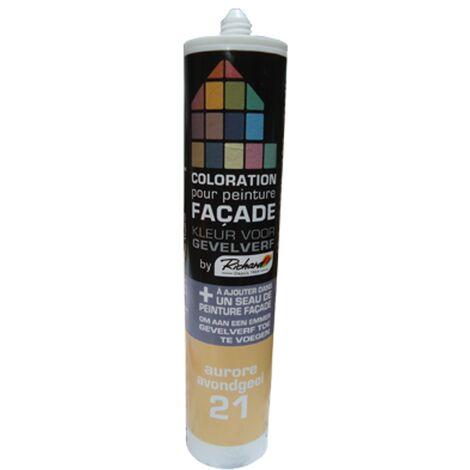 pintura tinte fachadas Richard amanecer 450 gr - Aurore