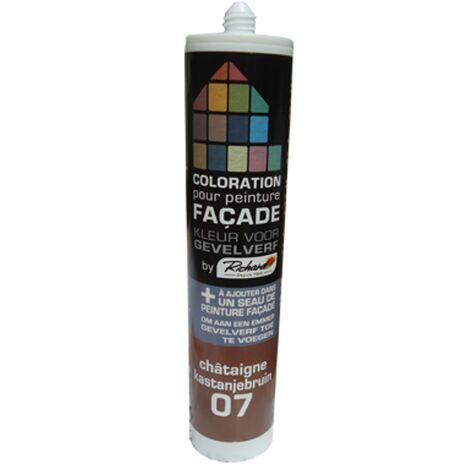 pintura tinte fachadas Richard castaña 450 gr - Chataigne