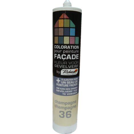 pintura tinte fachadas Richard Champagne 450 gr - Champagne